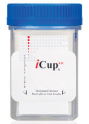 10 panel icup